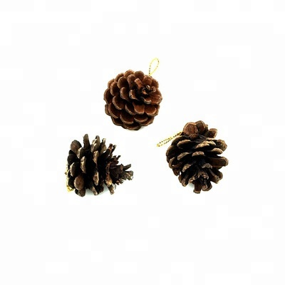 Hot Sale Christmas Decorative Pine Cone