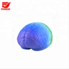 Promotional Foam Squeeze Brain Stress Ball